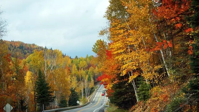 """步入金秋,枫叶之国加拿大,迎来了一年中最美的时候!大街小巷,城里郊外,山涧湖边,到处一片红的,黄的,橙的,绿的,就似一件五彩羽衣,将整个国家都笼罩在无边的灿烂中。 枫叶大道 """"枫叶大道""""(Maple Road)由40、417和407号公路串连而成,全长约800公里,西起尼亚加拉瀑布地区,东至魁北克省,沿途经过安大略湖、多伦多、金斯顿、圣劳伦斯河、渥太华和蒙特利尔。沿途穿越峡谷、河流、山峦和湖泊,红枫处处,景致非凡。   落基山脉 秋季是色彩最多元的时候,远处的高山上已降下白雪,森林"""